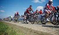 Greg Van Avermaet (BEL/BMC) in the peloton over the Oude Kwaremont<br /> <br /> 99th Ronde van Vlaanderen 2015