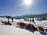 Deutschland, Bayern, Chiemgau: Schneelandschaft auf der Winklmoosalm - Entspannen im Liegestuhl | Germany, Bavaria, Chiemgau: winter landscape at Winklmoosalm - deck chairs