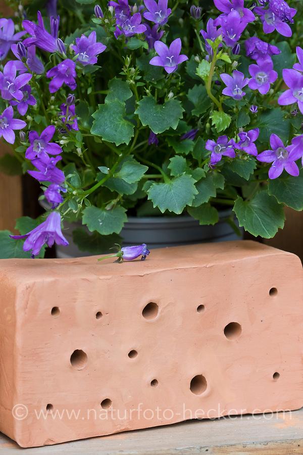 Wildbienen-Nisthilfe aus Ton. Besteht aus Tonblöcken mit unterschiedlichen dicken, breiten Löchern, Wildbienen-Nisthilfen, Wildbienen-Nisthilfe selbermachen, selber machen, Wildbienenhotel, Insektenhotel, Wildbienen-Hotel, Insekten-Hotel