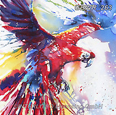 Simon, REALISTIC ANIMALS, REALISTISCHE TIERE, ANIMALES REALISTICOS, innovativ, paintings+++++,GBWR263,#a#, EVERYDAY ,parrot,parrots