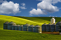 Grain silos and wheat field. the Palouse, Washington