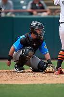 Akron RubberDucks catcher Logan Ice (9) during an Eastern League game against the Bowie Baysox on May 30, 2019 at Prince George's Stadium in Bowie, Maryland.  Akron defeated Bowie 9-5.  (Mike Janes/Four Seam Images)