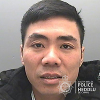"""Pictured: Tran Van Giang<br /> Re: The ringleaders of a Vietnamese crime gang have been jailed after police seized 2.5 tonnes of cannabis worth about £6m in raids across south Wales.<br /> A total of 21 people have been sentenced in a case going back to 2017 after dozens of cannabis factories were uncovered across the region and beyond.<br /> One of the defendants initially claimed to be 14 years old, but police proved he was actually aged 26.<br /> The gang leaders were sentenced at Merthyr Tydfil Crown Court on Friday.<br /> Bang Xuan Luong, 44, was sentenced to eight years in prison. His partner, 42-year-old Vu Thi Thu Thuy, was jailed for six years and Tuan Anh Pham, 20, who was described in court as the """"IT Man"""", received five years.<br /> An investigation into a cannabis factory in the Cynon Valley led officers from South Wales Police's Force Intelligence and Organised Crime Unit (FIOCU) to a string of others across south Wales, Gwent and Dyfed-Powys force areas."""
