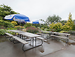 Rain on Picnic Tables, Oregon Gardens, Silverton, Oregon, USA, an 80 acre botanical garden in the Willamette Valley.  Windy day.  HDR image.