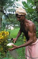 INDIA Karnataka, farm near Mangalore, farmer cut fresh coconut to drink / INDIEN, Farm bei Mangalore, Farmer oeffnet eine frische Kokosnuss zum Trinken