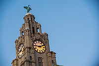View of the top of the liver building, Liverpool, England, UK