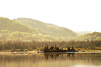 The rolling shoreline of Lake Superior in golden morning light, Pukaskwa National Park.