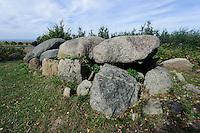 Grabhügel Magelowberg mit Ganggrab der Jungsteinzeit auf der Insel Rügen, Mecklenburg-Vorpommern, Deutschland