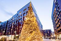 Europa, Deutschland, Hamburg, Hafencity, Ueberseequartier, Weihnachtsmarkt, Weihnachtsbaum, Osaka Allee<br /> <br /> Engl.: Christmas decoration in Hamburg Harbour City, Germany, Europe, winter, December 2014
