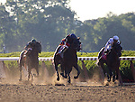 June 7, 2014: Tonalist with Joel Rosario aboard wins the Grade I Belmont Stakes at Belmont Park in Elmont, New York. Zoe Metz/ESW/CSM