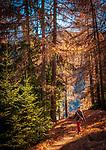 Italien, Suedtirol (Trentino-Alto Adige), Gadertal oberhalb Wengen: Wanderweg | Italy, South Tyrol (Trentino-Alto Adige), Val Badia above La Valle: hiking trail