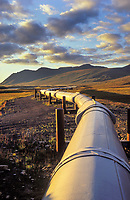 The Trans Alaska oil pipeline stretches across the autumn tundra of Alaska's Arctic coastal plains, Arctic, Alaska.