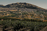 The town of San Giuseppe Jato, Sicily.