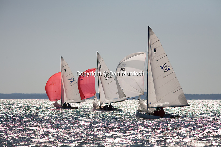 Thistle sailboats racing with spinnakers set