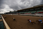MAR 14: The field for the Grade 1 Beholder Mile races in front of a crowd less grandstand as Santa Anita Park remains closed to the public due to concerns over the coronavirus in Arcadia, California on March 14, 2020. Evers/Eclipse Sportswire/CSM