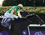 November 7, 2020 : Audarya, ridden by Pierre-Charles Boudot, wins the Maker's Mark Filly & Mare Turf on Breeders' Cup Championship Saturday at Keeneland Race Course in Lexington, Kentucky on November 7, 2020. Bill Denver/Breeders' Cup/Eclipse Sportswire/CSM