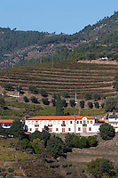 vineyards hilltop village near assento view from winery quinta da gaivosa douro portugal