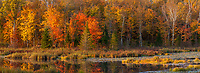 Panorama of Autumn foliage and a pond, Minnesota.