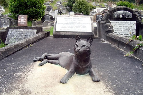 Forever together. Mrs Chippy immortalized in stone on Harry McNish's grave in Wellington, New Zealand