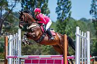 CLASS 32: Intro Horse 80cm