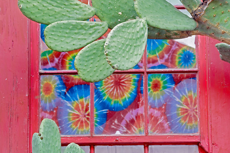 Red window with tie dyed curtin and cactus. Tucson. Arizona