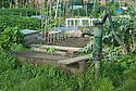 Old hand pump on allotment site.