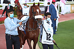March 27 2021: RB FRYNCHH DUDE #12, in the post parade for the Dubai Kahayla Classic at Meydan Racecourse, Dubai, UAE. Shamela Hanley/Eclipse Sportswire/CSM