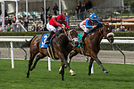 ARCADIA, CA  MARCH 17: #3 River Boyne, ridden by Joel Rosario, edges out #9 Inscom, ridden by Tyler Baze, in the stretch of the Pasadena Stakes on March 17, 2018, at Santa Anita Park in Arcadia, CA(Photo by Casey Phillips/ Eclipse Sportswire/ Getty Images)