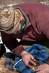 New Hampshire Fish and Game Biological Technician, Brett Ferry conducsts a physical exam of a trapped New England cottontaol rabbit habitat inside the Great Bay National Wildlife Refuge.