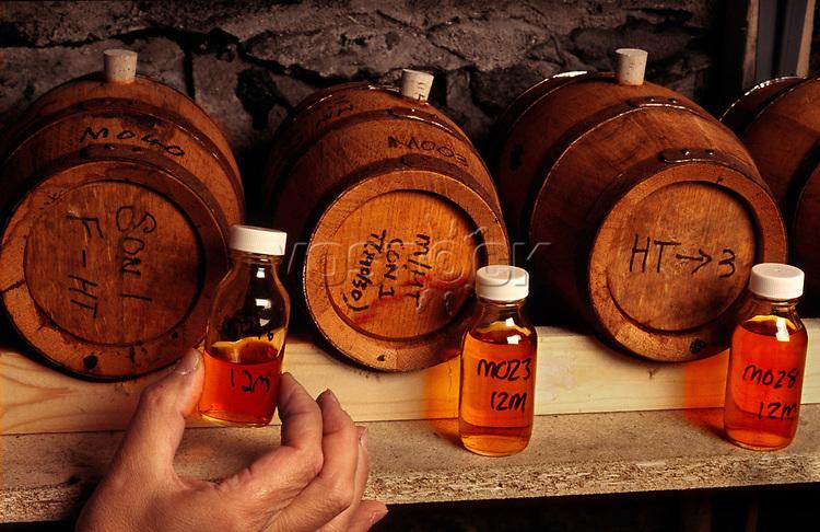 Europe, Great Britain, Scotland, The Scotch Whisky Research Institute in Edinburgh, samples of Whisky.- Europa, Grossbritannien, Schottland, das Scotch Whisky Forschungsinstitut in Edinburgh, Whiskyproben.2003. Copyright: Dorothea Schmid / Agentur laif(Bildtechnik: sRGB, 53.26 MByte vorhanden)