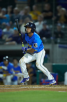 Zach Davis (24) of the Myrtle Beach Pelicans follows through on his swing against the Winston-Salem Dash at TicketReturn.com Field on May 16, 2019 in Myrtle Beach, South Carolina. The Dash defeated the Pelicans 6-0. (Brian Westerholt/Four Seam Images)
