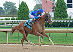 June 15, 2019: Sally's Curlin, trained by Dale Romans, wwins a maiden special weight at Churchill Downs on June 15, 2019 in Louisville, KY. Jessica Morgan/ESW/CSM