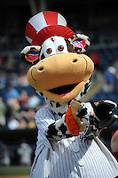 Staten Island Yankees Mascott Scooter the Holy Cow during game against the Hudson Valley Renegades at Richmond County Bank Ballpark at St.George on June 24, 2012 in Staten Island, NY.  Staten Island defeated Hudson Valley 9-1.  Tomasso DeRosa/Four Seam Images