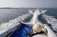 - Brindisi, speedboats of smugglers in navigation<br /> <br /> - Brindisi, motoscafo di contrabbandieri in navigazione