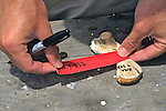 Marking Turtle Toe Bone