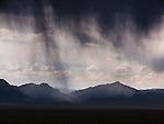 rain shower, Desert Ranage, Nevada
