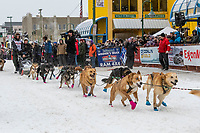Robert Redington and team leave the ceremonial start line with an Iditarider and handler at 4th Avenue and D street in downtown Anchorage, Alaska on Saturday March 7th during the 2020 Iditarod race. Photo copyright by Cathy Hart Photography.com