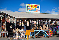 Souvenir shop in San Felipe, Baja California, Mexico.  A rapidly-growing resort and retirement community for U.S. citizens is taking place all along the coast north and south of San Felipe.