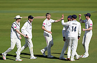 Olly Stone of Warwickshire celebrates taking the wicket of Paul Walter  during Warwickshire CCC vs Essex CCC, LV Insurance County Championship Group 1 Cricket at Edgbaston Stadium on 22nd April 2021