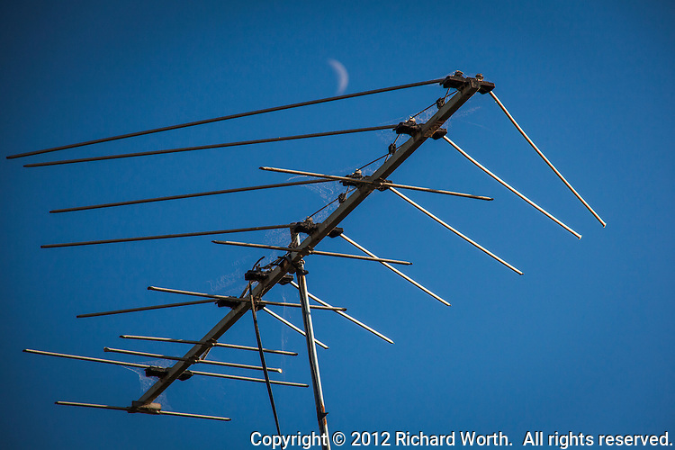Like an insect impaled on sky-blue velvet, a TV antenna with cob webs glows in late afternoon light while high above the crescent moon floats by.