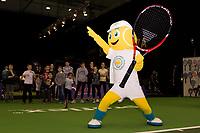 Rotterdam, Netherlands, 12 Februari, 2018, Ahoy, Tennis, ABNAMROWTT,<br /> Photo:tennisimages.com