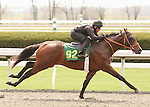 07 April 2011.  Hip #92 Unbridled's Song - Arabis colt, consigned by Kings Equine.