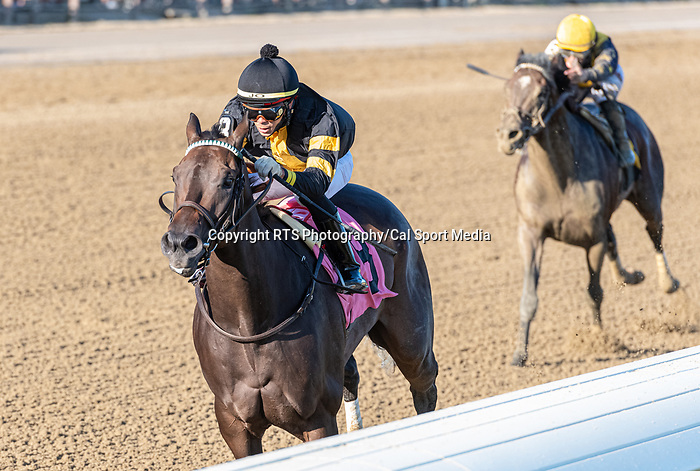 09042021:#8 Bab Yoda ridden by Jose Ortiz trained by W. Mott wins race 10 on The JOCKEY GOLD CUP day at Saratoga<br /> Robert Simmons/Eclipse Sportswire