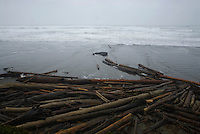 Driftwood at Kalaloch Beach, Kalaloch, Olympic National Park, Washington, US