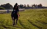 September 7, 2021: Scenes from the Eclipse Sportswire Photo Workshop at Kentucky Downs in Franklin, Kentucky, photo by Tim Sudduth/Eclipse Sportswire Photo Workshop