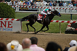 MAY 16, 2015: Fame and Fortune wins the Sir Barton Stakes with Martin Garcia aboard at Pimlico Race Course in Baltimore, Maryland. Jon Durr/ESW/Cal Sport Media