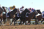 LEXINGTON, KY - APR 20: Valadorna (#9, ridden by Brian J. Hernandez Jr.) wins the 24th running of the G3 Doubledogdare at Keeneland, Lexington, Kentucky. Owner Stonestreet Stables LLC (Barbara Banke), trainer Mark E. Casse. By Curlin x Goldfield, by Yes It's True. (Photo by Mary M. Meek/Eclipse Sportswire/Getty Images)
