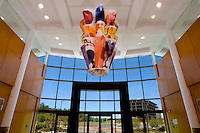 "Art piece ""Chandelier: the stuff of stars"" hangs in the Whitehall Corporate Center in Charlotte, NC. The piece, realized in July 2006, is by Czech-born painter and sculptor Pavel Kraus."