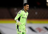 3rd February 2021; Craven Cottage, London, England; English Premier League Football, Fulham versus Leicester City; Goalkeeper Alphonse Areola of Fulham