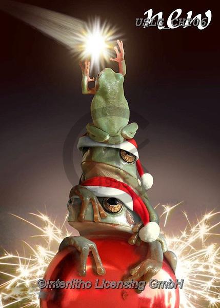 CHIARA,CHRISTMAS ANIMALS, WEIHNACHTEN TIERE, NAVIDAD ANIMALES, paintings+++++,USLGCHI06,#XA# ,funny ,funny